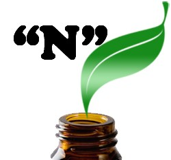 Fragrance Oils: N